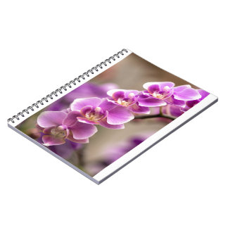 Deep Pink Phalaenopsis Orchid Flower Chain Notebook