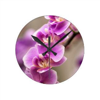 Deep Pink Phalaenopsis Orchid Flower Chain Round Clock