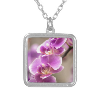 Deep Pink Phalaenopsis Orchid Flower Chain Silver Plated Necklace