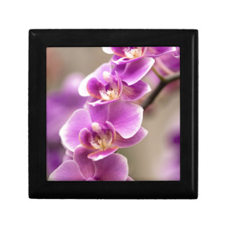Deep Pink Phalaenopsis Orchid Flower Chain Small Square Gift Box