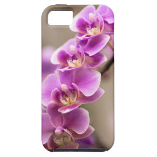 Deep Pink Phalaenopsis Orchid Flower Chain Tough iPhone 5 Case