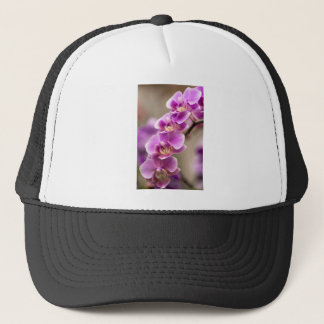 Deep Pink Phalaenopsis Orchid Flower Chain Trucker Hat