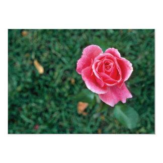 Deep Pink Rose flowers Invite