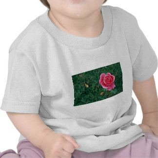 Deep Pink Rose flowers Tshirt