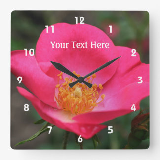 Deep Pink Rose In Bloom Flower Clocks