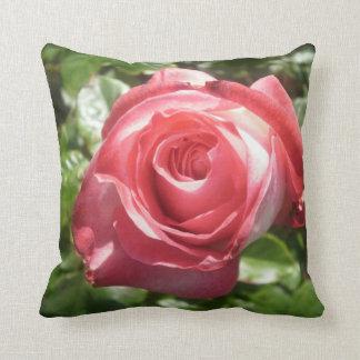 Deep Pink Rose Throw Cushions