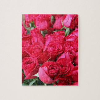 Deep Pink Roses Jigsaw Puzzles