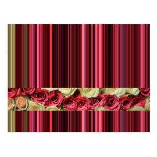 Deep pink roses & stripes by TheRoseGarden Postcard