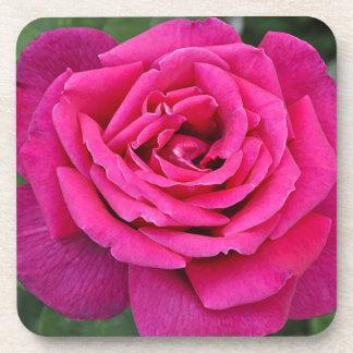 Deep pink single rose drink coasters