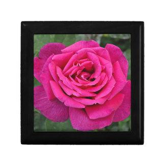 Deep pink single rose small square gift box