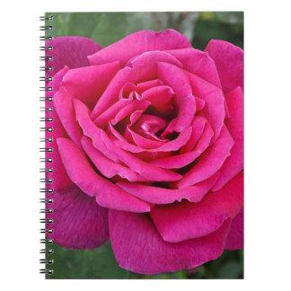 Deep pink single rose spiral note book