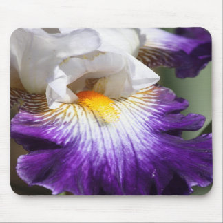 Deep Purple and White Iris Mousepad