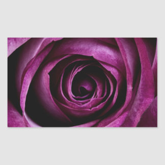 Deep Purple Rose Rectangular Sticker