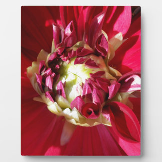 deep red bloom plaque