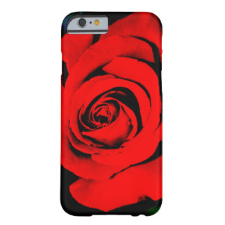 Deep Red Rose Barely There iPhone 6 Case