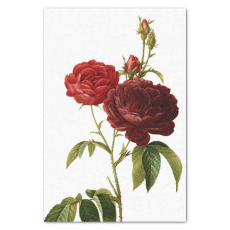 Deep red vintage roses painting tissue paper