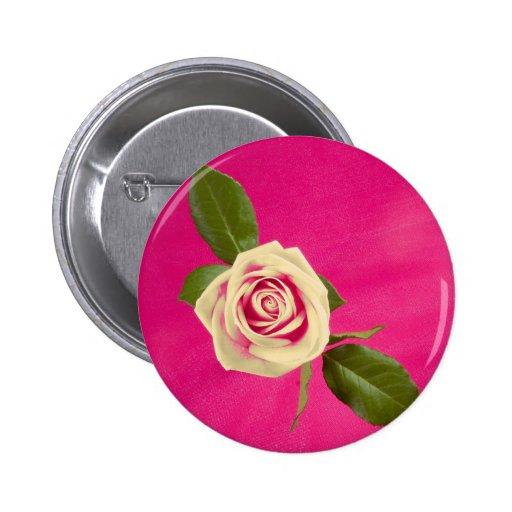 Deep Yellow Rose On Deep Pink Background Pin