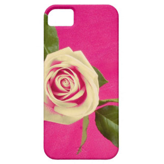 Deep Yellow Rose On Deep Pink Background iPhone 5 Cover