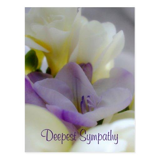 Deepest Sympathy Postcard