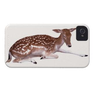 deer 2 Case-Mate iPhone 4 cases