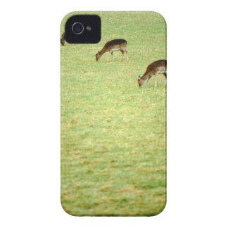 deer 2 iPhone 4 Case-Mate cases