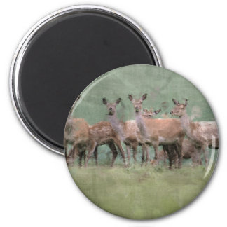 Deer 6 Cm Round Magnet