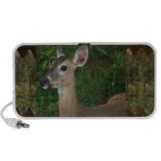 Deer Animal Mammal Zoo Farmer Jungle Wild Park fun iPod Speaker