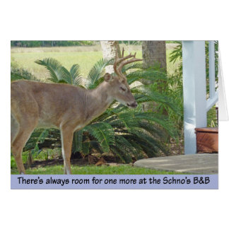 Deer approaching stairs card