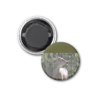 Deer Brush 3 Cm Round Magnet
