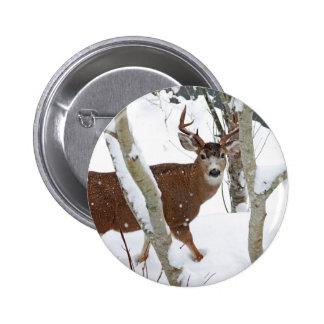Deer Buck in Snow in Winter Pin