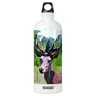 Deer (BUCK) SIGG Traveller 1.0L Water Bottle