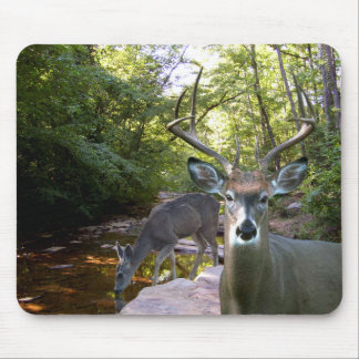 Deer Creek Mousepad 01