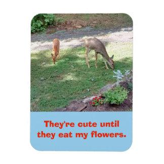 Deer Cute Until They Eat My Flowers 3x4 Magnet