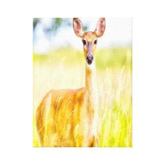 Deer Digital painting Canvas Print