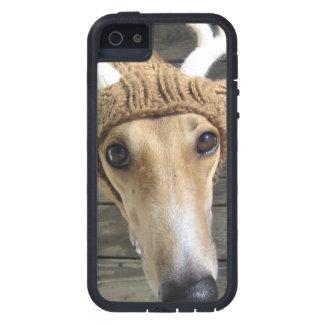Deer dog - cute dog - whippet iPhone 5 case