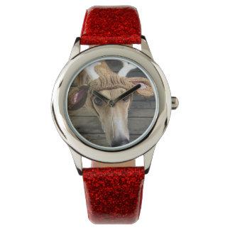 Deer dog - cute dog - whippet watch
