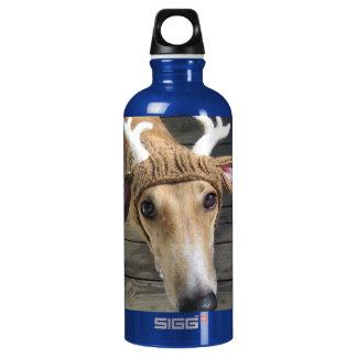 Deer dog - cute dog - whippet water bottle