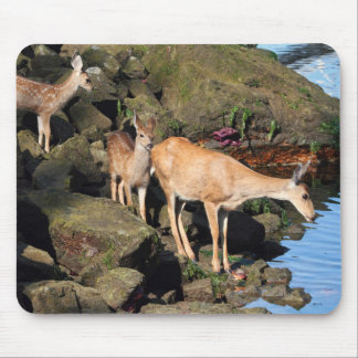 Deer Family with Twin Fawns by the Ocean Mousepad