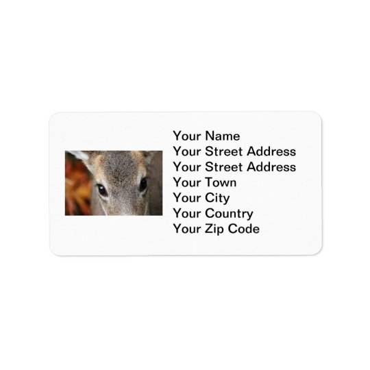 Deer Fawn Closeup Portrait Address Label