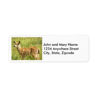 Deer Fawn Photo Return Address Labels