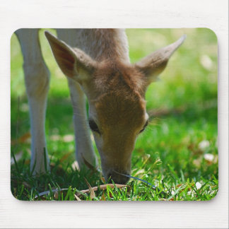 Deer Go Green Mouse Pad