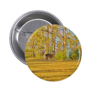 Deer Golden Grass blue Sky Button