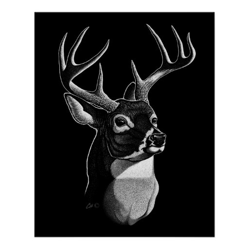 Deer Head Scratchboard-style Print