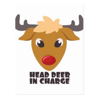 Deer In Charge Postcard