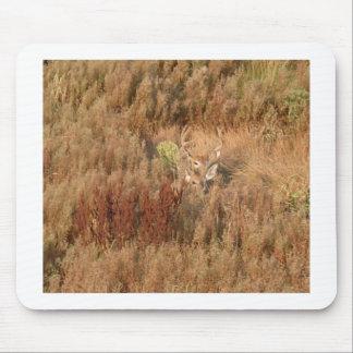 Deer in Hiding Mouse Pad