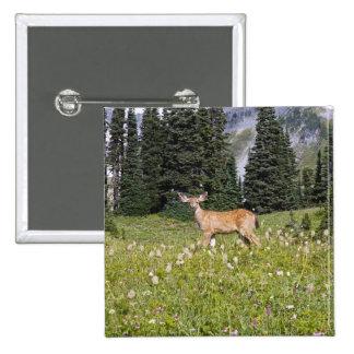 Deer in Paradise Park 15 Cm Square Badge