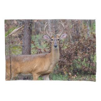 Deer in Silver Springs Pillowcase