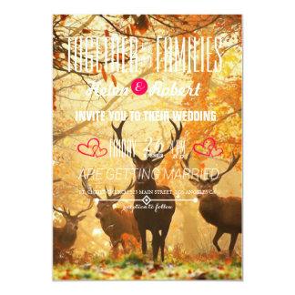 Deer in the autumn sun rays card