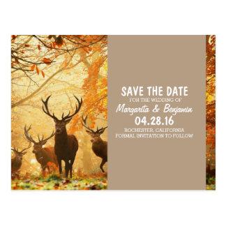 Deer in the autumn sun rays /Save The Date Postcard