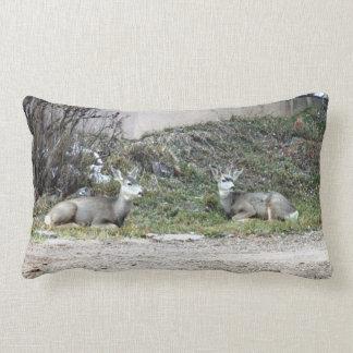 Deer in the Wild Lumbar Cushion